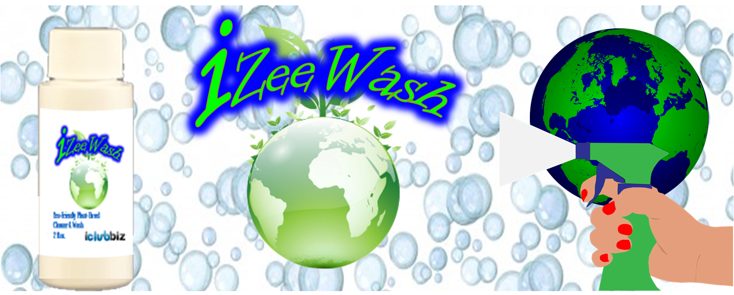 Earth Wash Logo